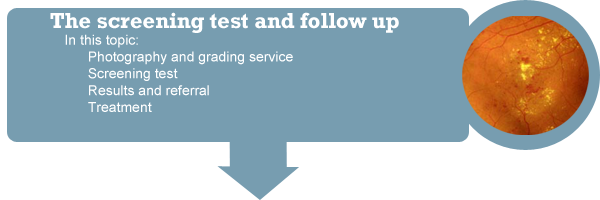 SEction 3: The screening test & Follow-up